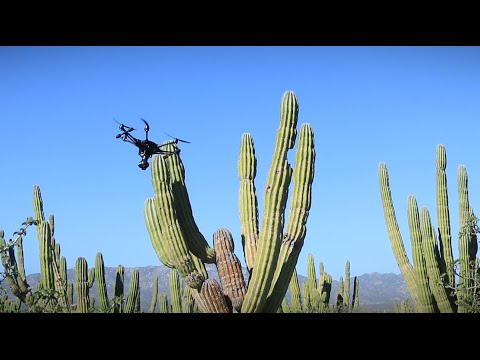 Typhoon H With Intel RealSense Technology