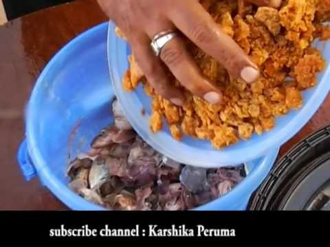 How To Make Fish Amino Acid Fertilizer (Malayalam) .!