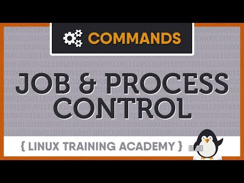 Linux Training Academy Blog | Linux Training Academy