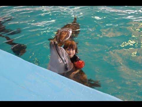 КУПАНИЕ С ДЕЛЬФИНАМИ | Дельфинарий ДЖУБГА | Дельфинотерапия