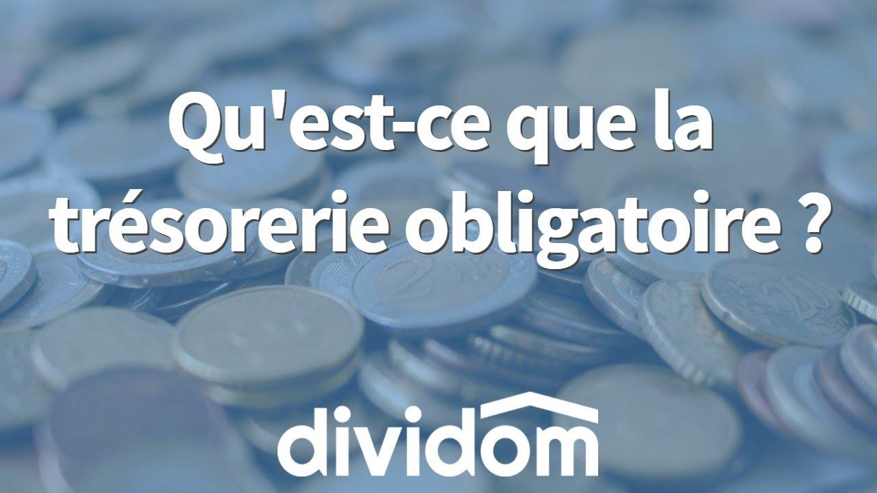 Crowdfunding Immobilier Qu Est Ce Que La Tresorerie Obligatoire