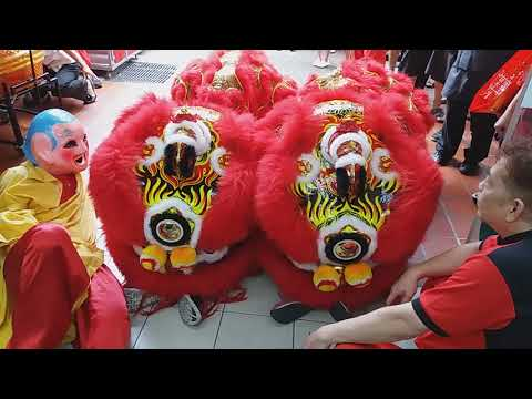 Singapore Zhong Hua Twin Lion Dance Cai Qing Performances at AMK FairPrice blk 716 on 10/2/18
