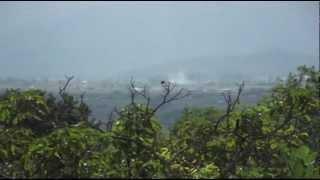 Rumore e vento anticipa Terremoto del Pollino di 7 ore. A fine video il meglio. 25.3.2012 CSF Rieti thumbnail