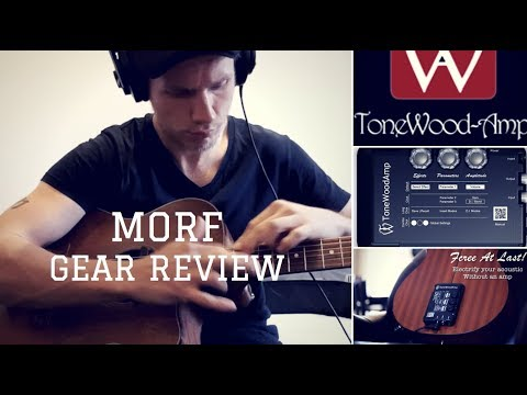 Morf Reviews - The 'Tonewood Amp'