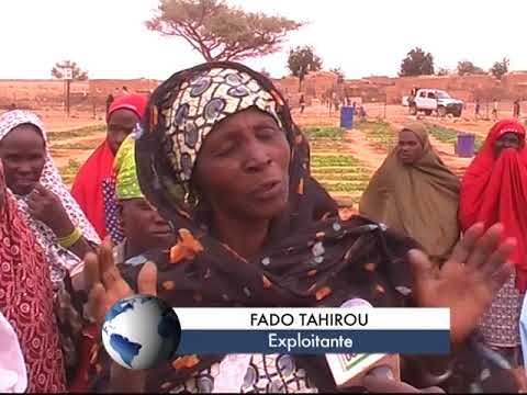 Empowering women in a context of climate change - Niger (2014)
