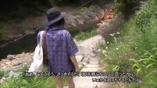 「尻焼温泉~シラネアオイ」 (蛇嫌いの方は、閲覧注意です) 2016-5-28