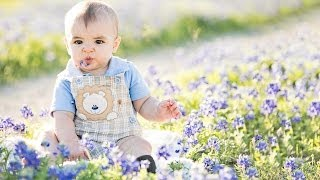 Family Photos in Texas Bluebonnets
