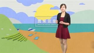 農業氣象1080531