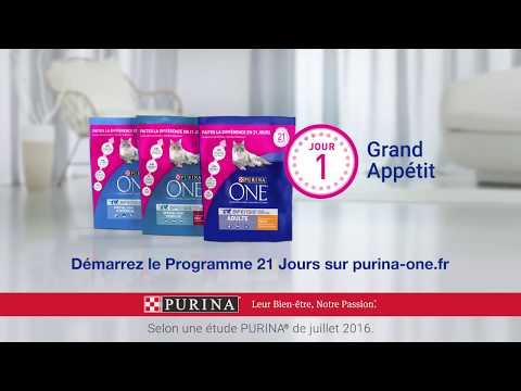 PURINA ONE® - Le Programme 21 Jours – Jour 14 : Une Digestion Plus Saine – 12s