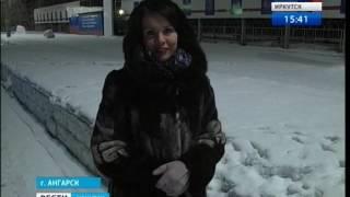 Дикая лиса, что приходит на цементный завод в Ангарске, привела ещё и своего друга