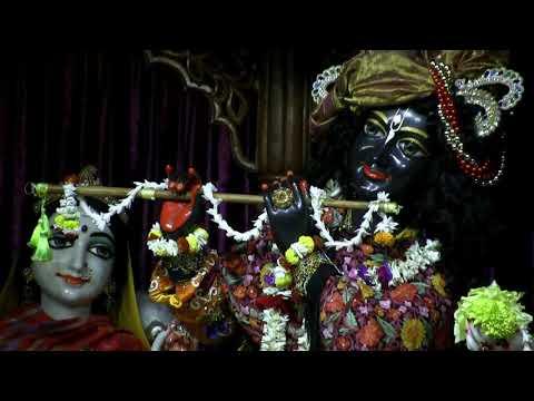 Mangal Arati Darshan of Sri Sri Radha Madhava & Sri Sri Pancatattva and Rajapur Jagannath