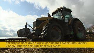 Лукашенко потребовал завершить уборочную к 7 ноября и сделать это качественно