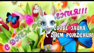 Zoobe Зайка, С Днем Рождения!