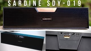 Sardine SDY-019 Review | All-In-One Bluetooth Speaker