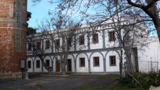 615. 20130207 - Antonella Fabbro - film famosi e finestre, sulle orme del Pinocchio di Comencini