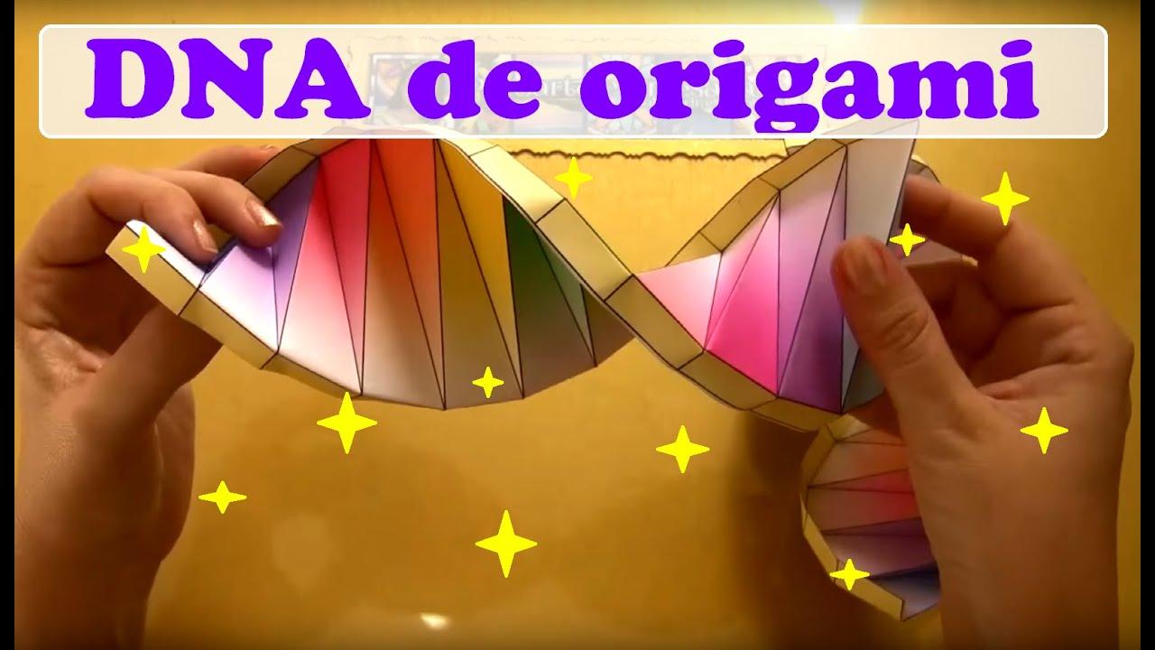 COMO FAZER FORMATO DE DNA EM ORIGAMI - YouTube - photo#31
