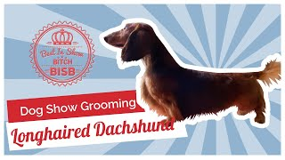 Dog Show Grooming: How to Groom a Longhaired Dachshund
