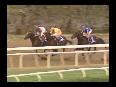1995 Woodward Stakes - Cigar