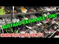 Buffalo Exchange / Goodwill Fun! (Sneaker Steals & Deals Dec 2014)
