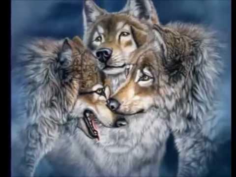 Enya - Crying Wolf - le chant du Loup (El Llanto del Lobo-La Canción del Lobo)