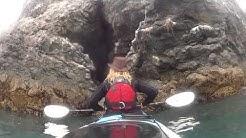 St. Augustine's Kayak Tours