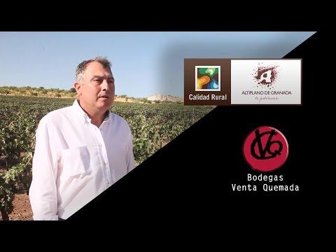 Bodegas Ventaquemada. Empresas con Marca Altiplano de Granada