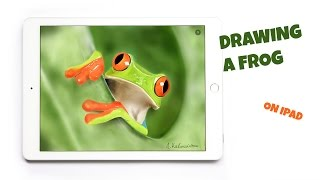 PAPER BY 53 - HOW TO DRAW A REALISTIC FROG ON IPAD