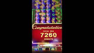 "Wolf Slot Machine ★ Bonus Win★ """"💥💥NEW GAME💥💥""""  !!! $4 Bet  3 Bonuses★Live Play Full Video★"