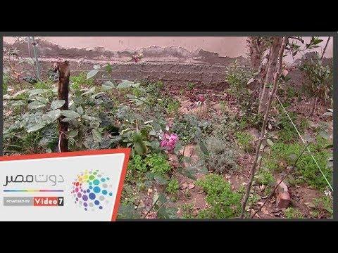 -العشاب الشامى- أبو فراس ينقل فن التجميل السورى لمصر  - نشر قبل 20 ساعة