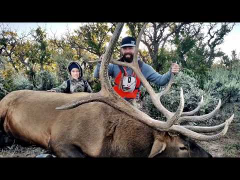 Epic Utah Book Cliffs Elk Hunt