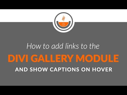 Divi Tutorial - Recipe #22 - How to Add Links to the Divi Gallery Module and Show Captions on Hover
