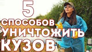 видео Антигравийная пленка