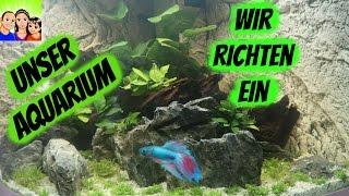 Unser Aquarium - Wir richten ein - DoJo´s Spielzeugwelt