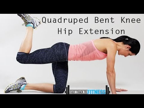Quadruped Bent Knee Hip Extension