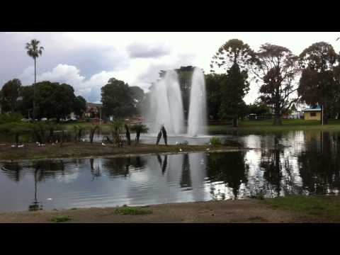 Queen park Moone Ponds, Melbourne