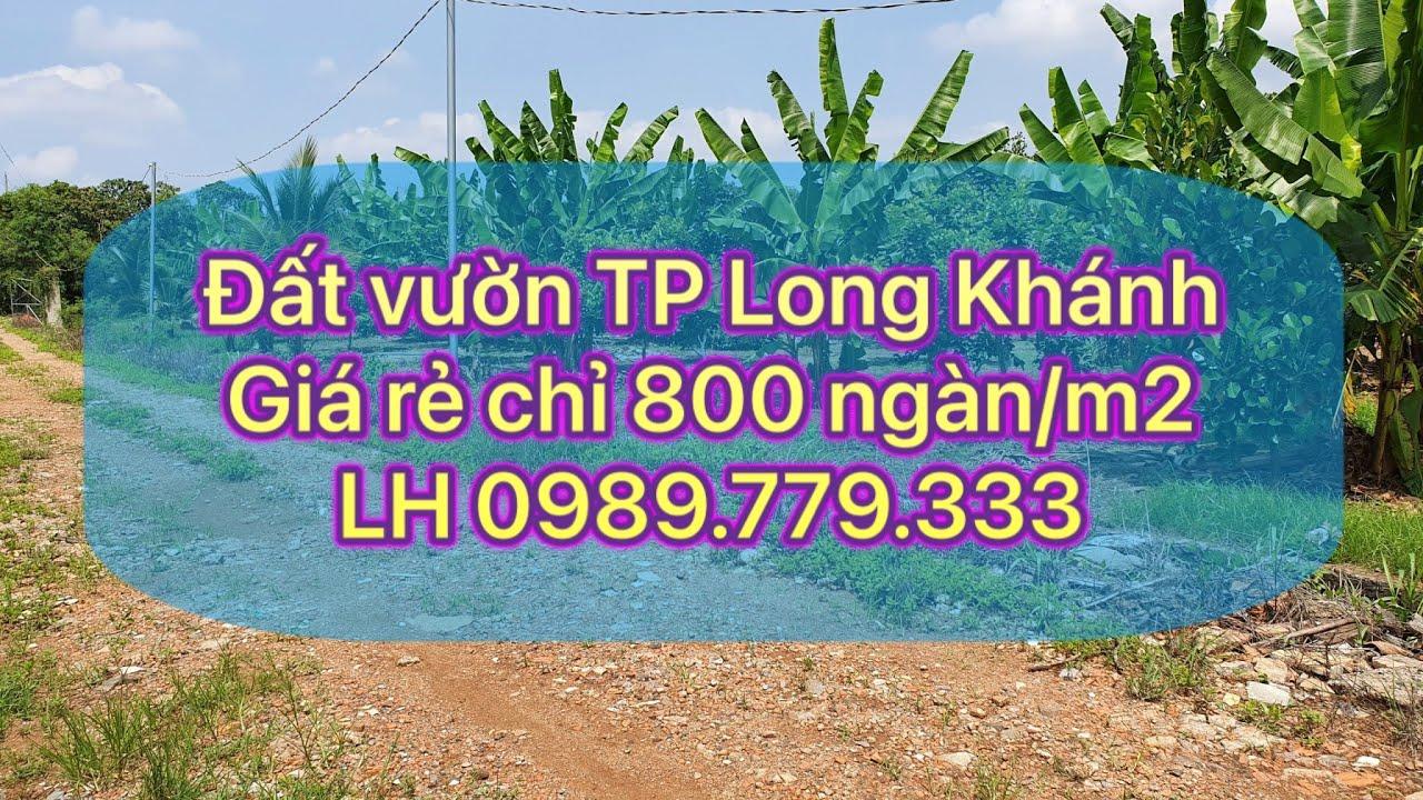 Đất Vườn Đồng Nai : 2 sào đất Bảo Quang,TP Long Khánh giá giảm còn 800 ngàn /m2