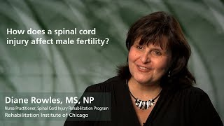 Male Fertility after Spinal Cord Injury