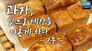 [한국사 探] 과자, 맛으로 세상을 이롭게 하다 - 2부 서양의 빵·과자, 식문화를 바꾸다 / YTN 사이언스