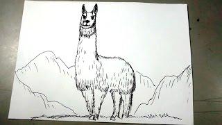 Cómo dibujar una llama de Los Andes paso a paso
