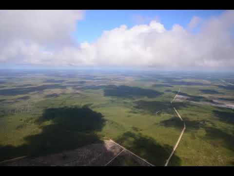 041Kingfisher Landing