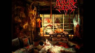 Rotting Decay - Dissected Alive