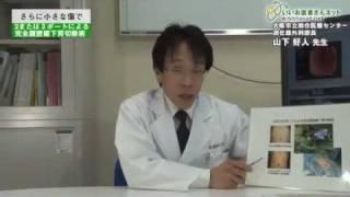 日本赤十字社和歌山医療センター 外科 山下好人先生による2または3ポ...