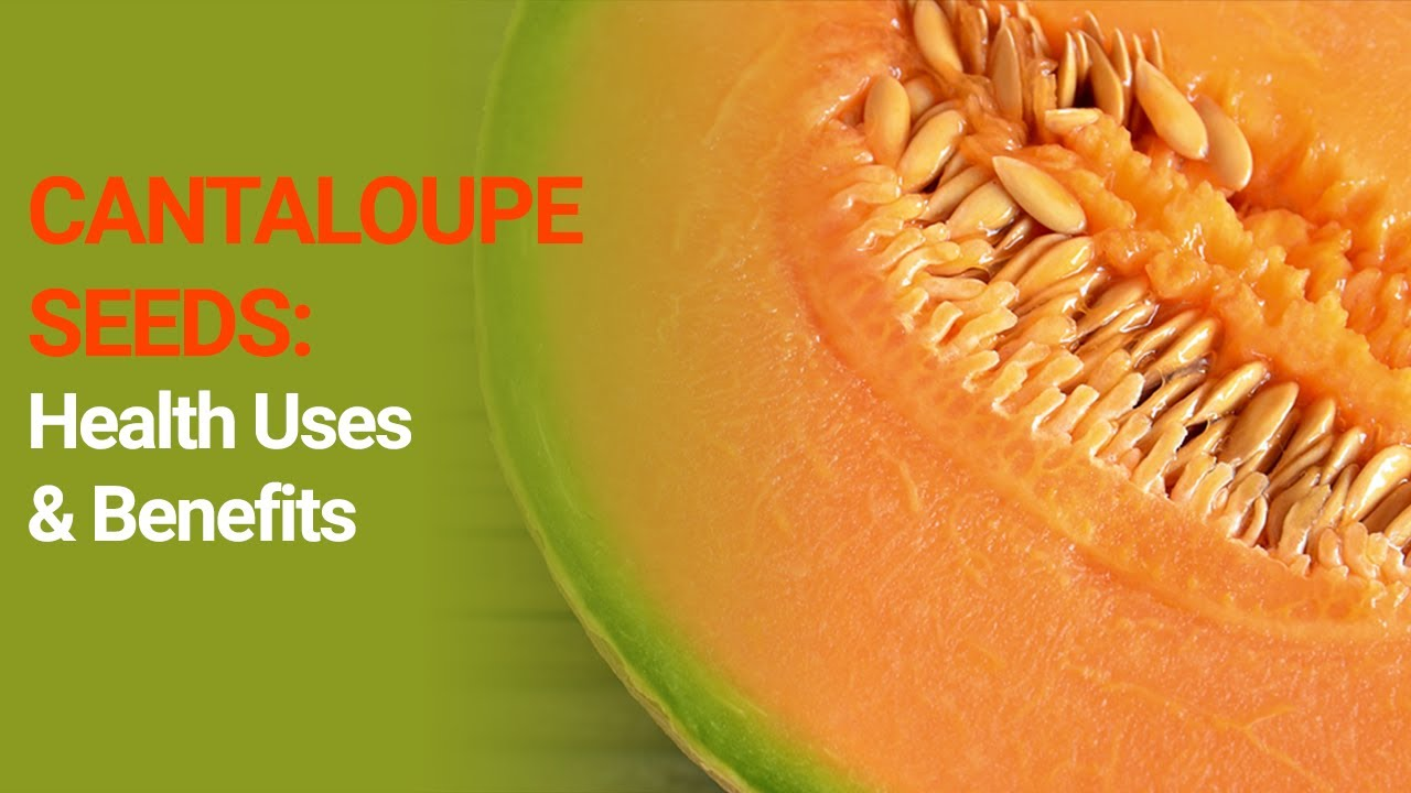 Cantaloupe Or Muskmelon Seeds Proved Health Benefits Side Effects And Fun Facts Nuturemite Youtube A cup of fresh cantaloupe has just 60 calories and provides plenty of vitamin c, vitamin a table of contents. cantaloupe or muskmelon seeds proved