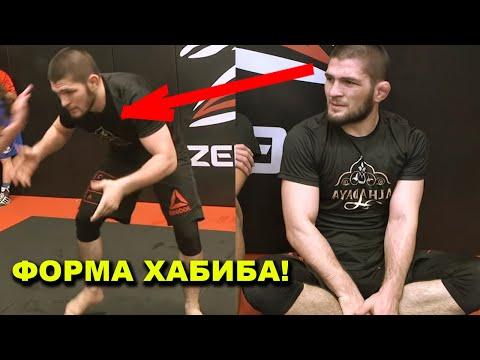Мощная форма Хабиба по борьбе/Чемпион UFC высказался о Ромеро/Диаз Vs Валя Шевченко