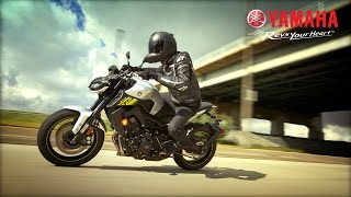 The Tech Savvy 2017 Yamaha FZ-09 | Serial No. 000001