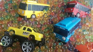 Search for cars for children in Water Beads ( Cars Toys & Tayo Bus )