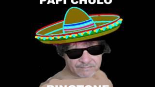 PAPI CHULO RINGTONE
