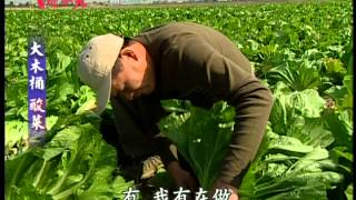 草地狀元-經典回顧系列之六 消失的大木桶酸菜