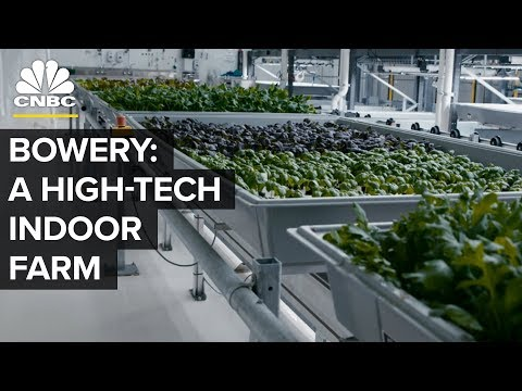 Bowery Outperforms A Square Foot Of Farmland | CNBC