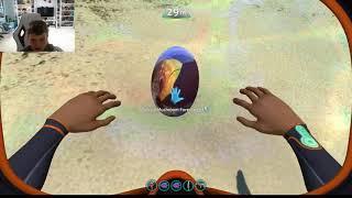 Subnautica Leviathan Egg